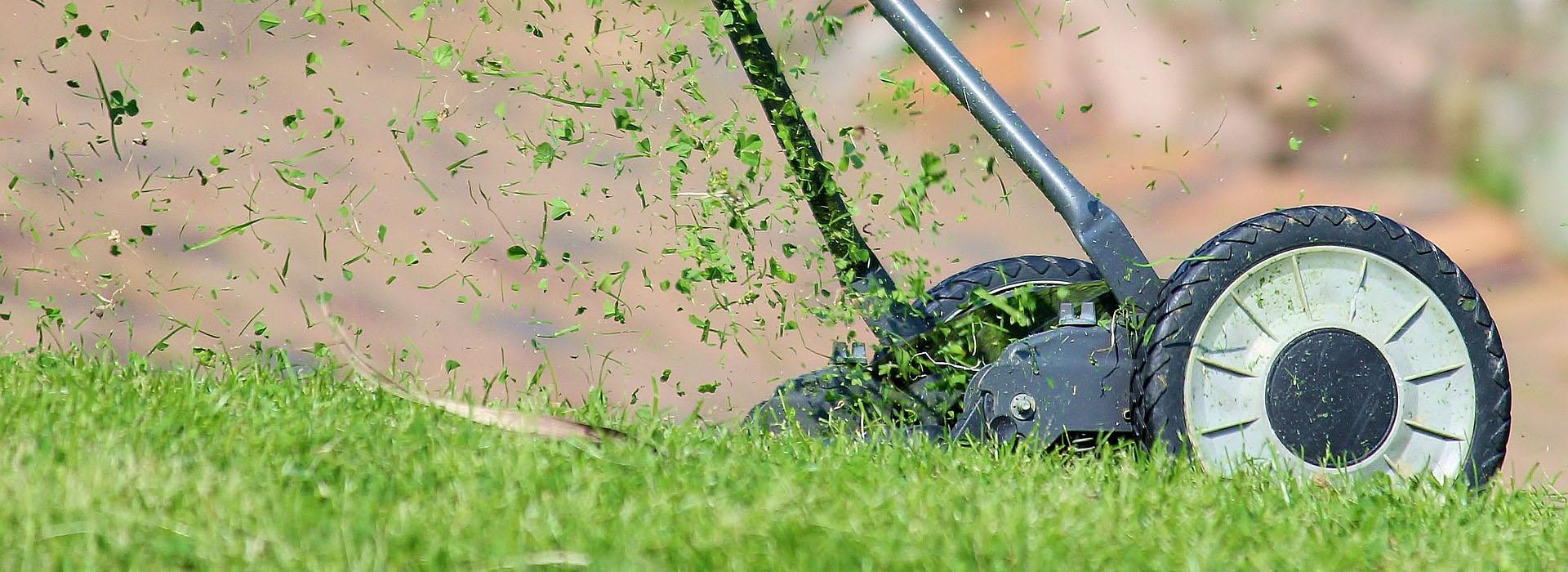 <small>Tereny zielone</small>Usługi ogrodnicze
